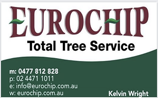 eurochip.png