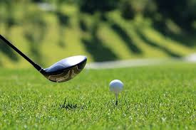 Golfer dies after hit by tree branch – Mollymook