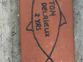 Durras Headland Footpath paver campaign raises $7100