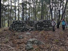 Bay Bushwalkers: Don Moir Hill walk Kioloa