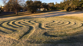 """""""Music on the Green"""" & Climate Picnic Events in Moruya"""