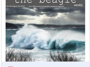 Beagle Weekender of August 21st 2020