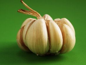 Aged Garlic helps lower blood pressure and cholesterol plus increases beneficial gut bacteria