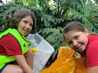 Bega: Shine the shire on Clean-up Australia Day