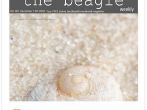 Beagle Weekender of December 11th 2020