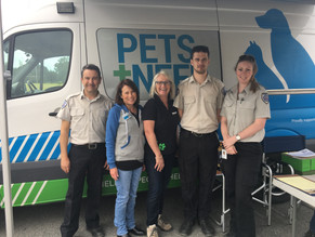 Free pet microchipping day for Narooma July 20th