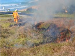 No burning for Dalmeny Kianga headlands