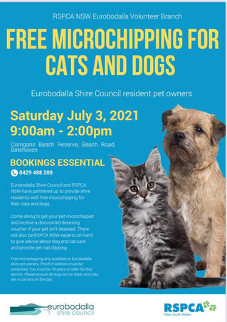 Free microchipping July 3rd