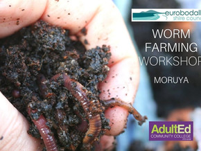 Free Worm Farming workshops in November