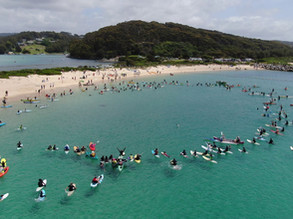 Hundreds flock to Narooma to Save Batemans Sanctuaries