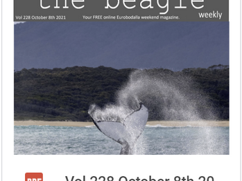 Beagle Weekender of October 8th 2021 OUT NOW