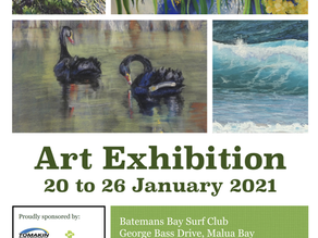 South Coast Pastel Society Exhibition Jan 20th to 26th