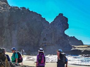 "Dalmeny Narooma Bushwalkers - A visit to Bologa Head and 'Queen Victoria Rock"""