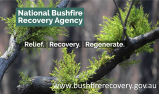 Government's own bushfire recovery agency wasn't consulted on which regions should qualify