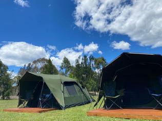 Mogo Camping Adventures arrives at Mogo Wildlife Park