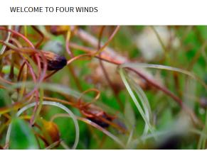 Fourplay @ Four Winds - free - Nov 12th