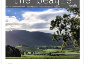 Beagle Weekender of December 4th 2020