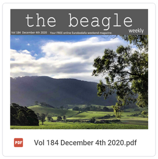 Beagle Weekender of December 4th 2020