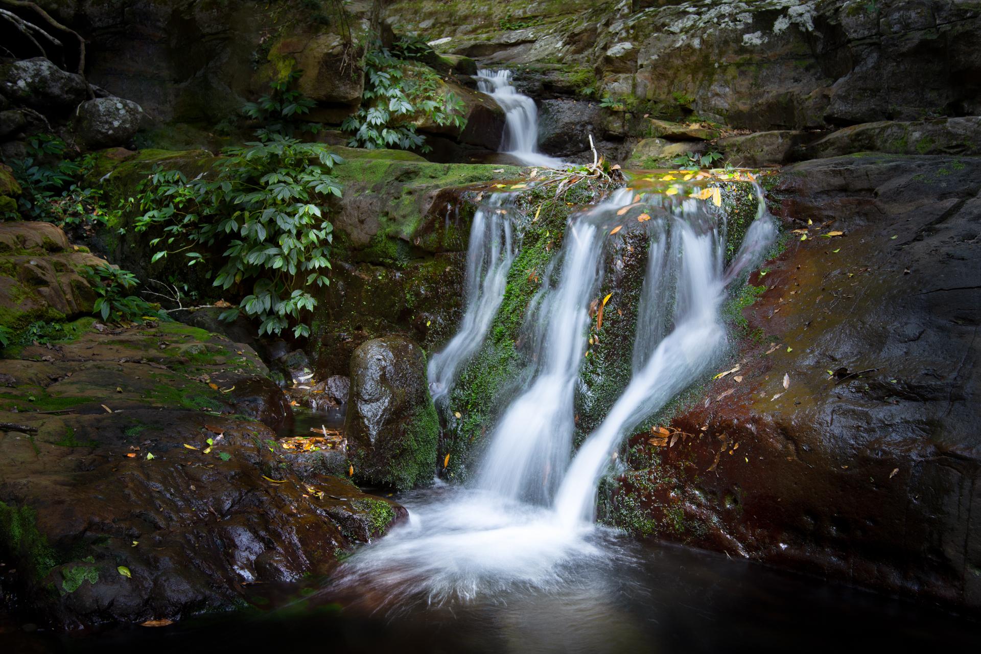 Minamurra River-Dave Kemp