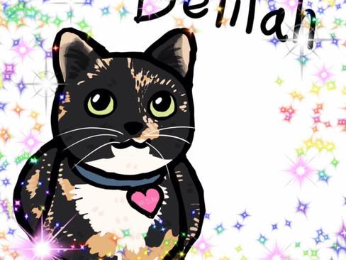 Justice for Delilah: WARNING: Cat killer in Tomakin
