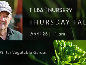 Tilba Nursery kicking off their Thursday Talks Apr 26th