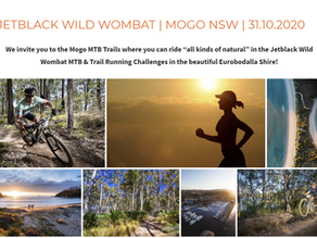 Jetblack Wild Wombat set to return to Mogo Oct 31st