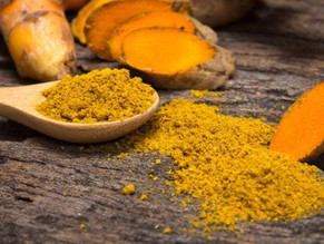 Highly Bioavailable Fermented Turmeric With Probiotics