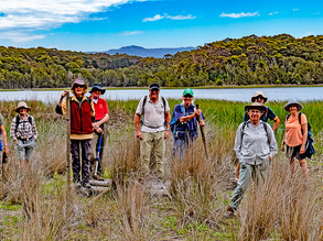 Dalmeny /Narooma Bushwalkers news Nov 12th