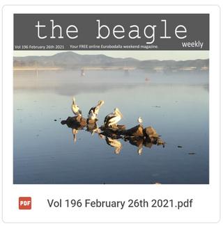Beagle Weekender of February 26th 2021