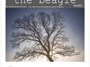 Beagle Weekender of November 6th 2020
