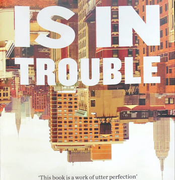 Fleishman is in trouble: a review
