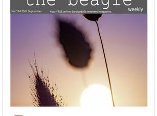 Beagle Weekender of September 25th 2020