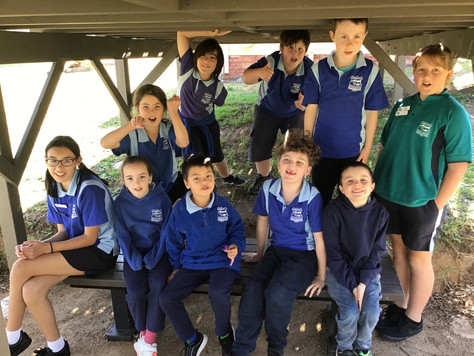 Bega: Kids get it sorted at school and home