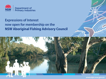 Regional members sought to sit on the NSW Aboriginal Fishing Advisory Council (AFAC)