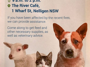 RSPCA  Community relief in Nelligen Sat March 14th