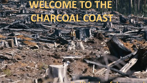 Logging and Land Clearing: Welcome to the Charcoal Coast!!