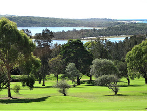 Tuross Head men golfers compete in monthly medal competition