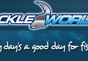 Your Up to Date Fishing report from Tackle World Moruya as at June 14th 2019
