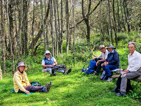 Dalmeny and Narooma Bushwalkers: Potato Point Bird Life Walk