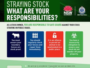 What is your Responsibility - Straying Stock on Public Roads