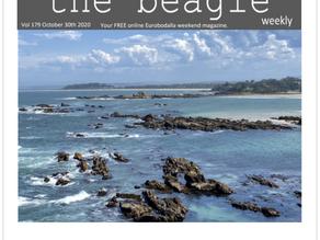 Beagle Weekender of October 30th 2020