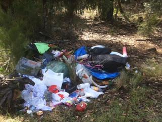 Illegal rubbish dumpers are losers