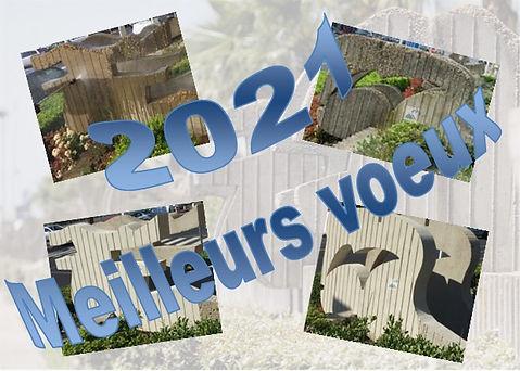 VOEUX 2021 01.jpg