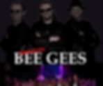 The Booleg Bee Gees