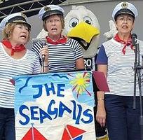 The Seagalls