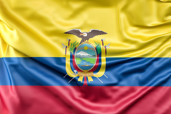 flag-of-the-ecuador.jpg