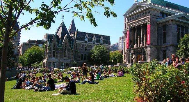 Hollanda'da üniversitelerde en çok tercih edilen tıp ve moda bölümü