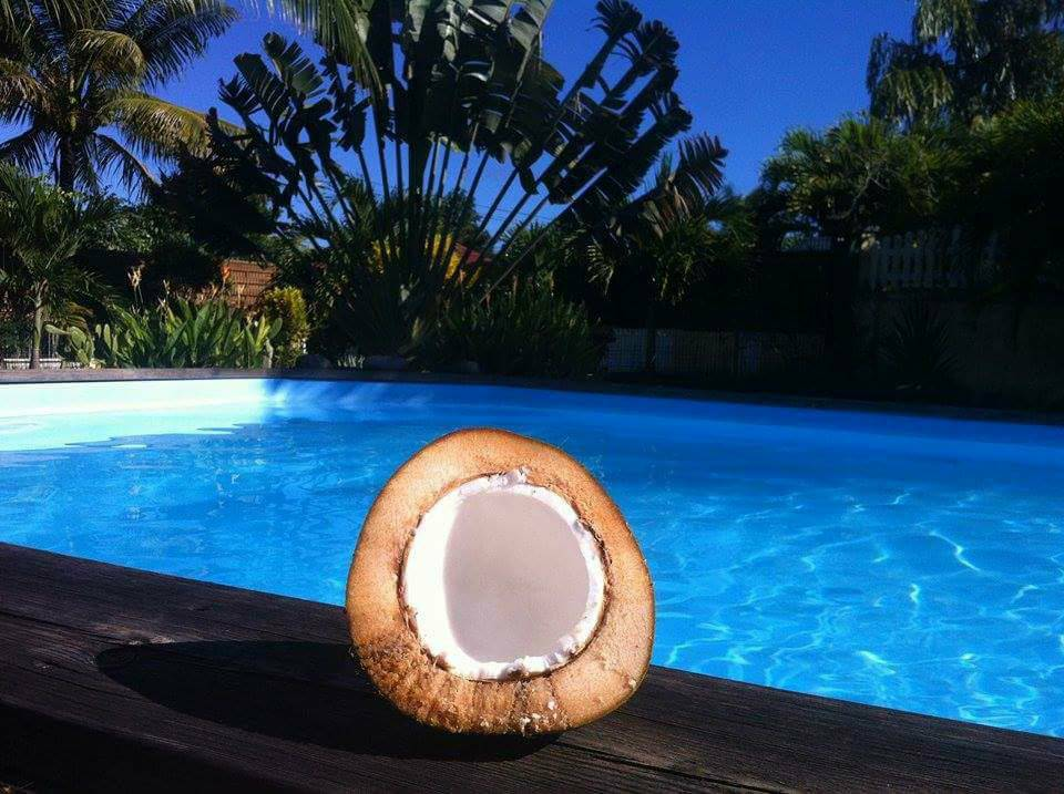 noix-de-coco-piscine-privee