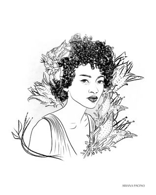 Darwinia Floral Portrait Sketch
