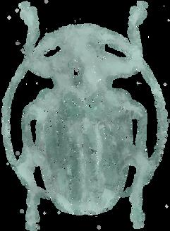 beetle3txtr.png